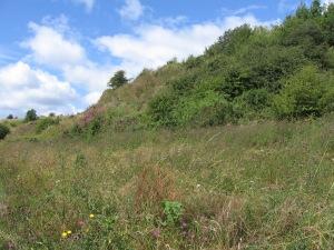 Rowley Hills 03