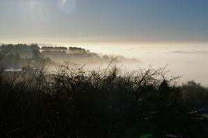 Rowley Hills winter scene (image © Mike Poulton)