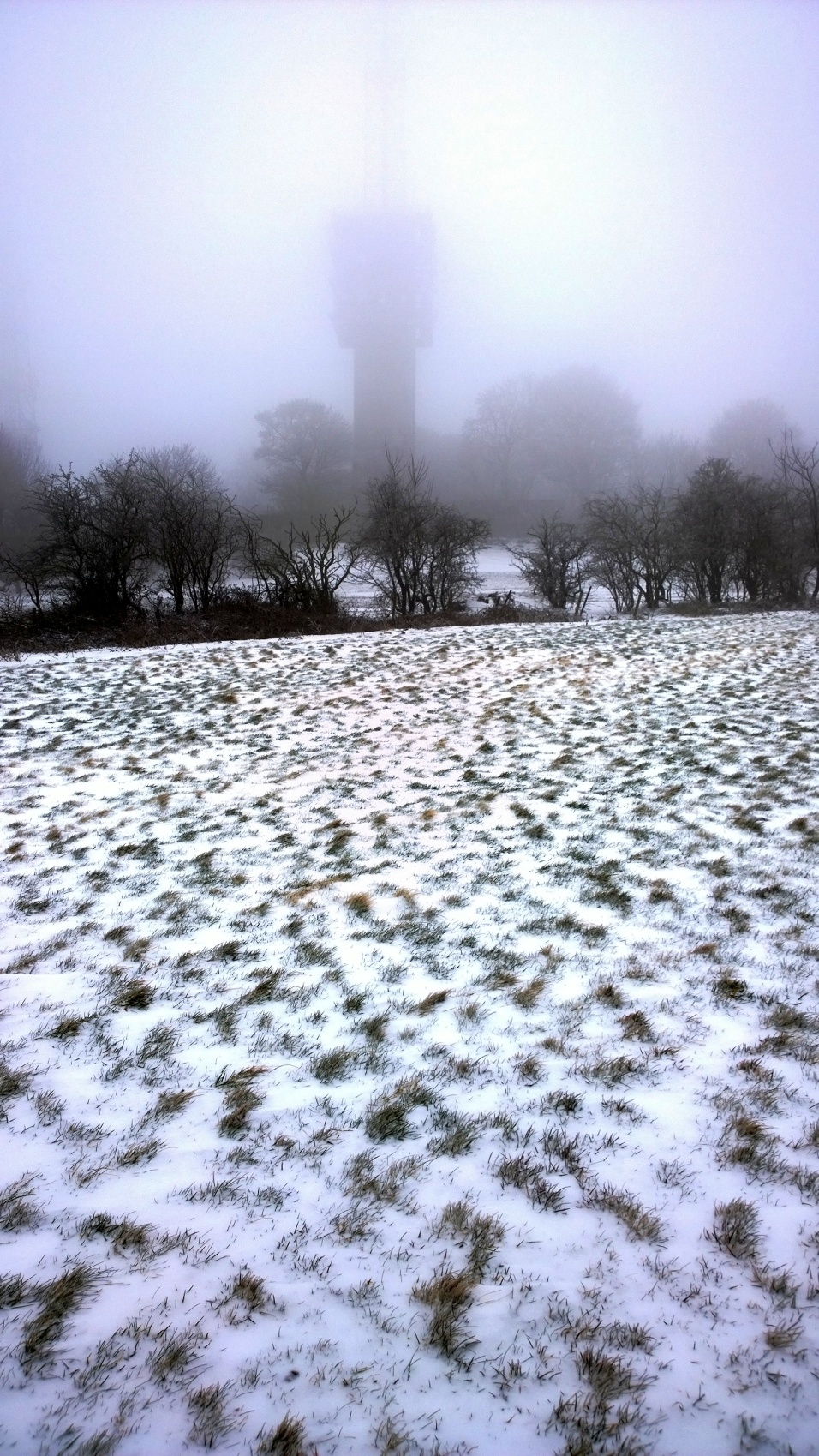 Snow-covered Rowley Hills (image © Mike Poulton)
